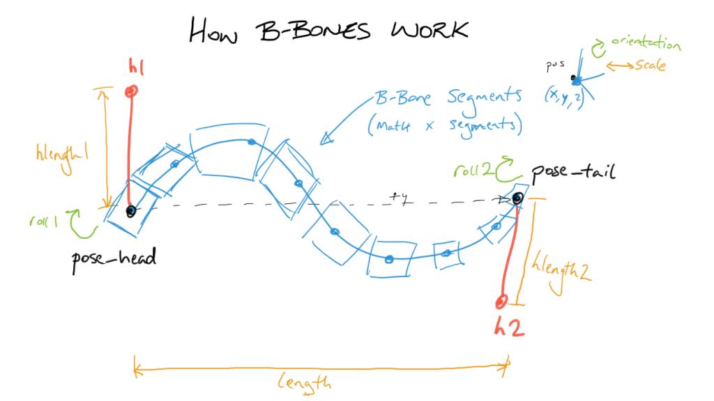 how_bbones_work-01