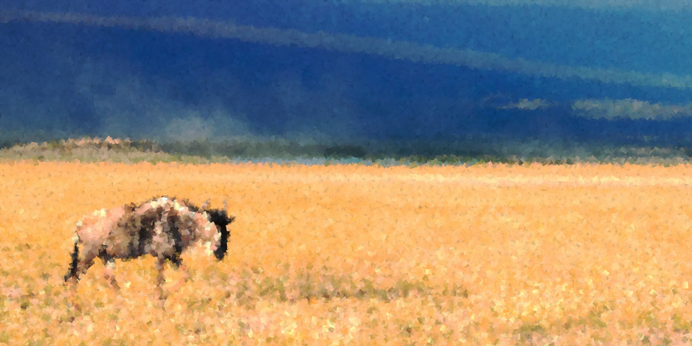 """""""The Lone Blue Widebeest (GNU)"""" with changes, original credit: Ray in Manila - CC BY 2.0"""